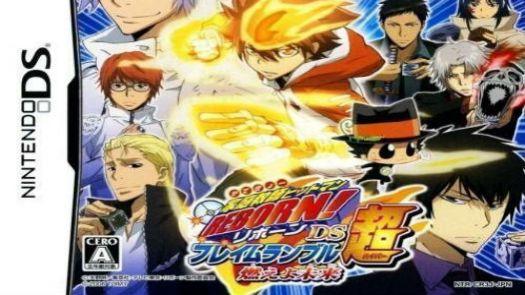 Katekyoo Hitman Reborn! DS Flame Rumble Gaikyoushuu (J)