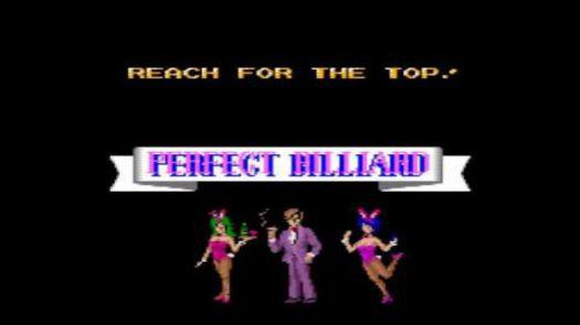 Perfect Billiard